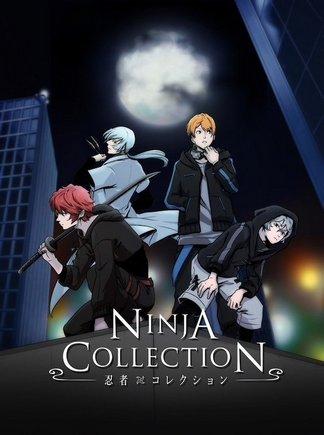 ninja-collection-5ef023b32b5a7p.jpg
